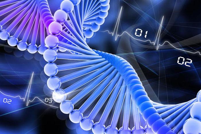 ДНК И ПОДСОЗНАНИЕ