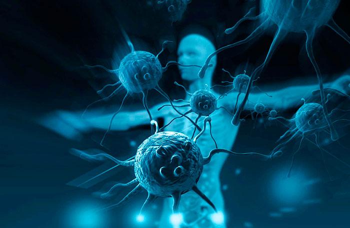 regeneratsiya-immunitet-i-rak